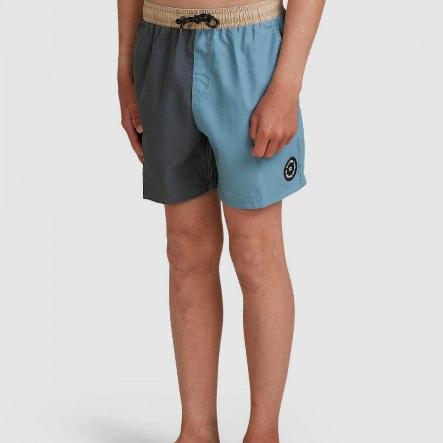 Boys Interchange Boys Boardshorts Colour is Multi