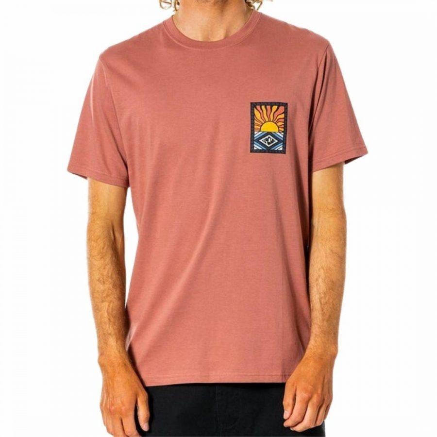 Swc Hazed Tee Mens Tee Shirts Colour is Washed Wine